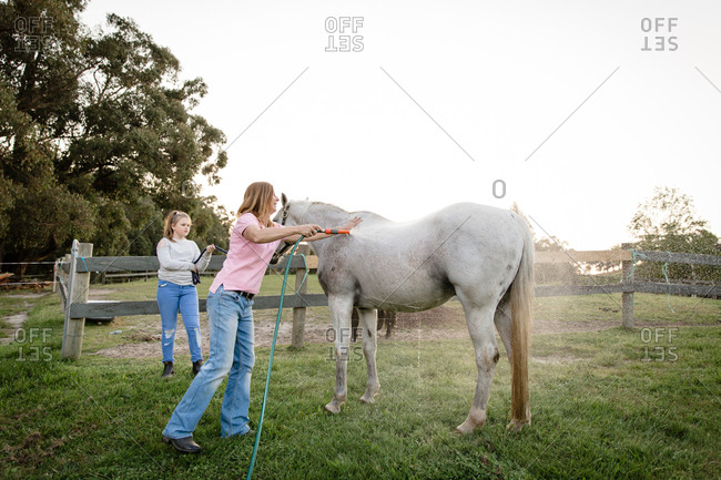 Woman and girl washing horse