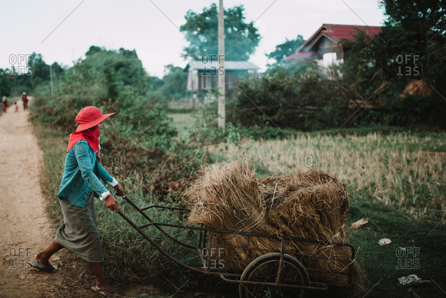Rural Province, Laos - March 16, 2018: Side view Asian peasant carrying dried plants on cart while walking through village.