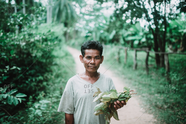Rural Province, Laos - March 16, 2018: Senior Asian man holding pile of leaves and looking at camera while standing on narrow path.