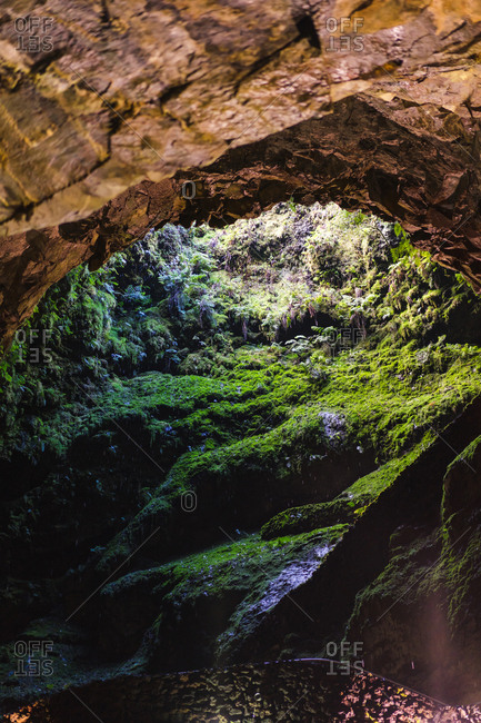 View to cave entrance hole covered with small green moss.