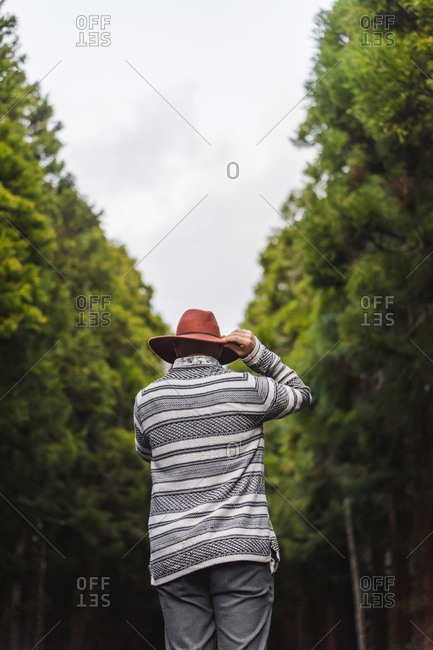 back handsome bearded man in hat standing on asphalt road in green forest.