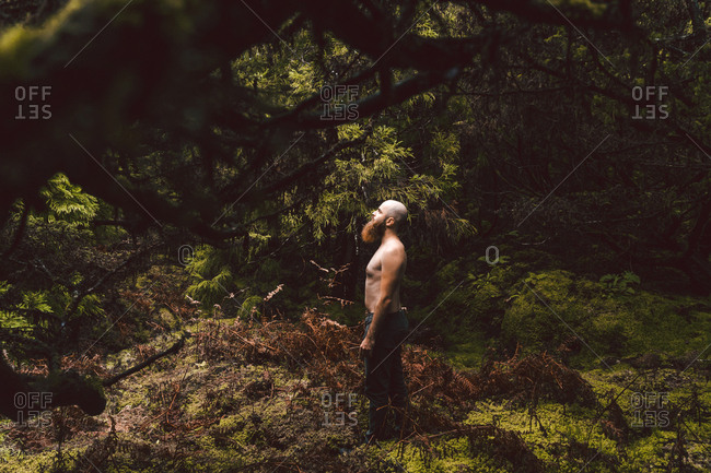 Naked man posing on forest