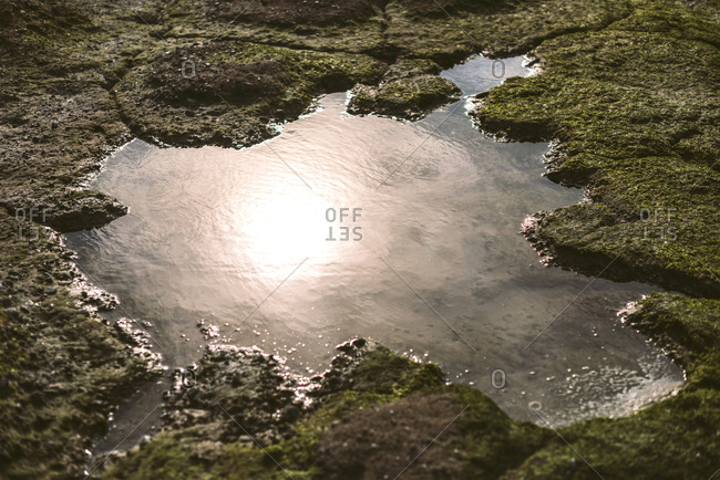Sun reflection in small puddle in a stone covered with moss.