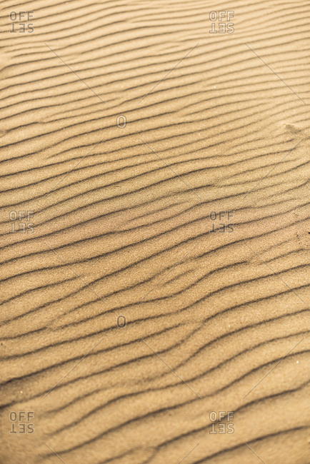 From above yellow wavy sand texture background.