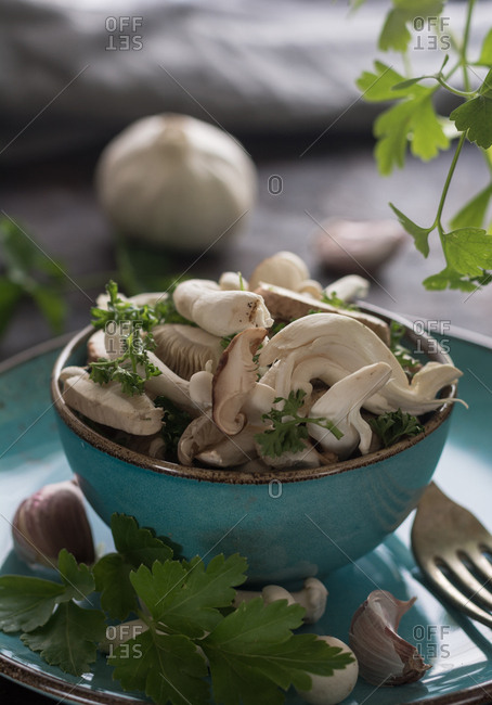 Blue Plate full of various types of edible mushrooms with parsley and garlic. Perfect dish for vegetarians