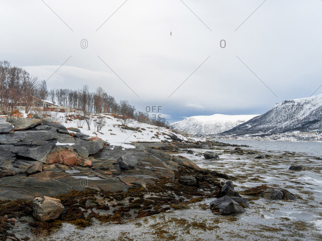 Rocks and snowy nature