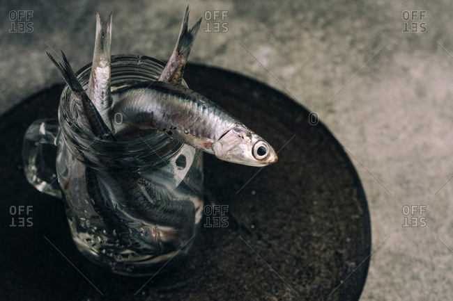 fresh anchovies, in the jar with water, detail. Grunge background.