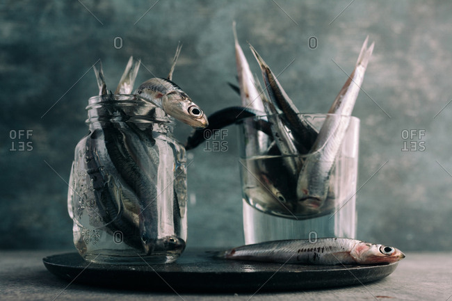 fresh anchovies, in jar with water, over black concrete plate, grunge background