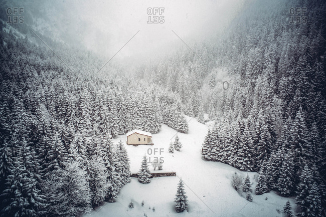 Cottage surrounded by pine trees in snow landscape.