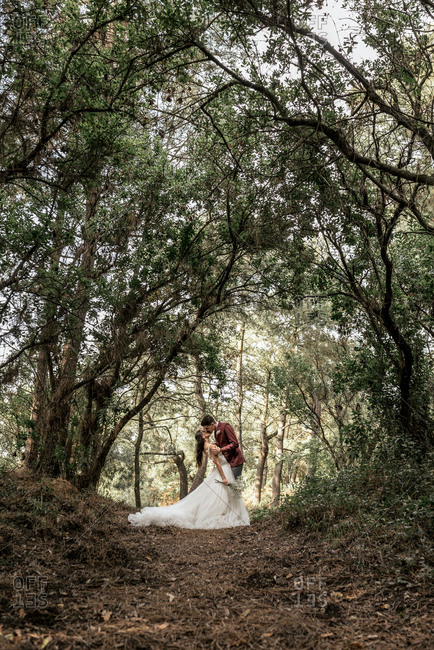 Bride and groom kissing passionately under big trees in the forest
