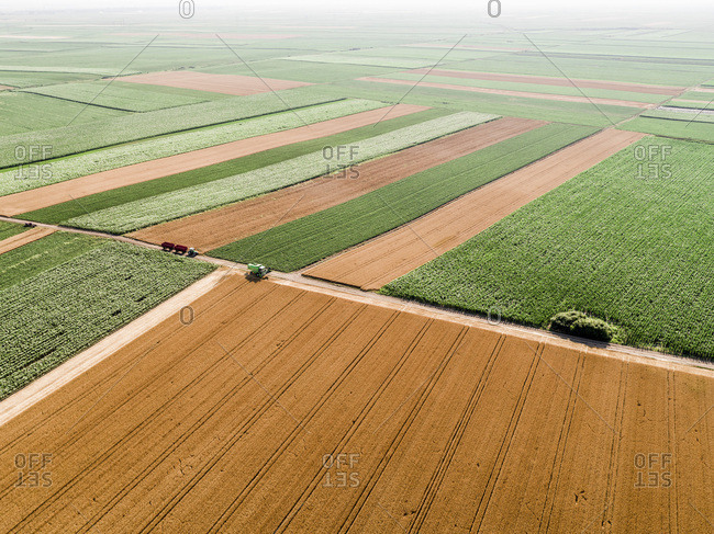 Serbia- Vojvodina- agricultural fields- aerial view at summer season