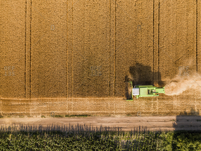 Serbia- Vojvodina. Combine harvester on a field of wheat- aerial view