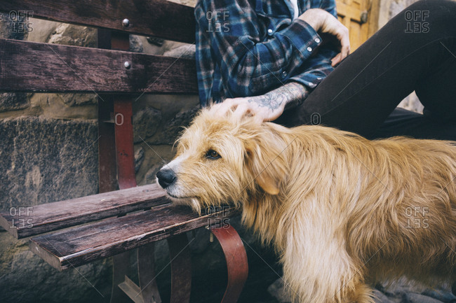 Midsection of man petting dog while sitting on bench at sidewalk