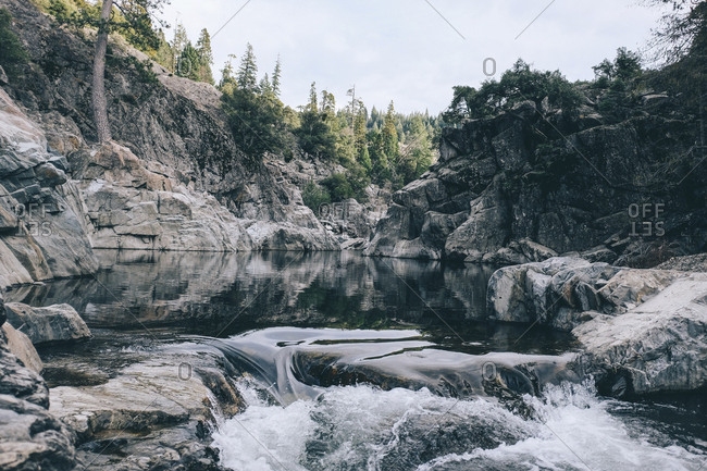 Scenic view of water flowing in Yuba River at forest