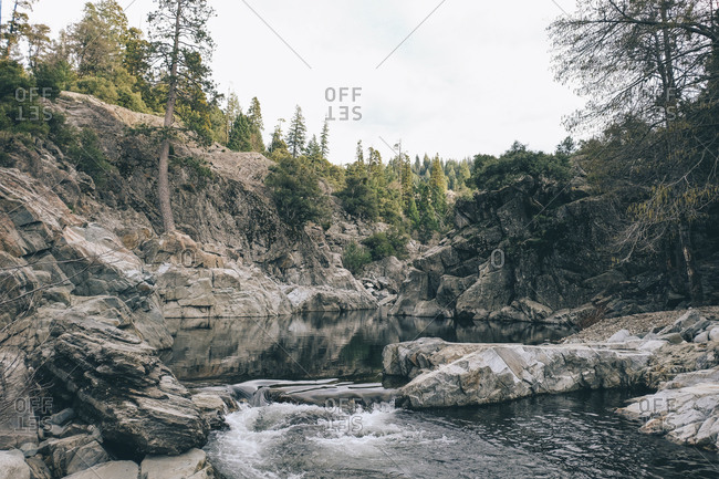 Scenic view of Yuba River at forest