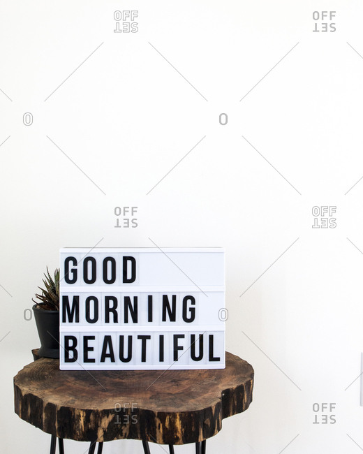 Text on placard with plant on wooden stool against white background