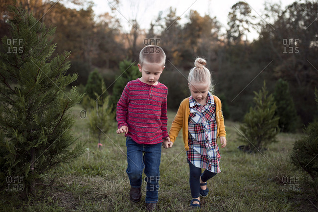 Siblings holdings hands while walking on grassy field