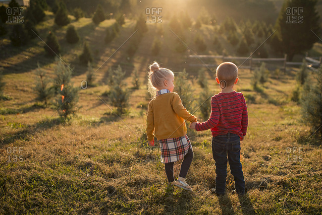 Rear view of siblings holdings hands while standing on grassy field during sunny day