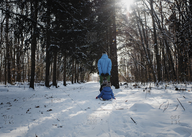Rear view of father pulling children sitting on sled in forest during winter