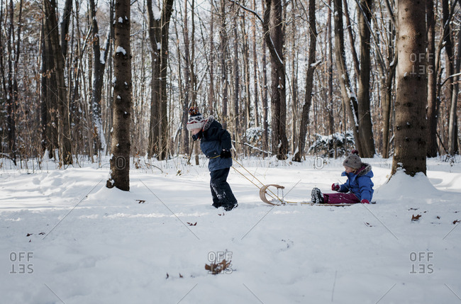 Side view of brother pulling sister sitting on sled in forest during winter