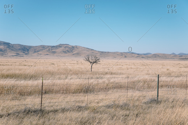 Looking over fence at vast dry grasslands ending at hills on horizon