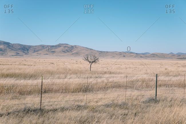 Looking over fence at vast dry grasslands ending at hills on horizon