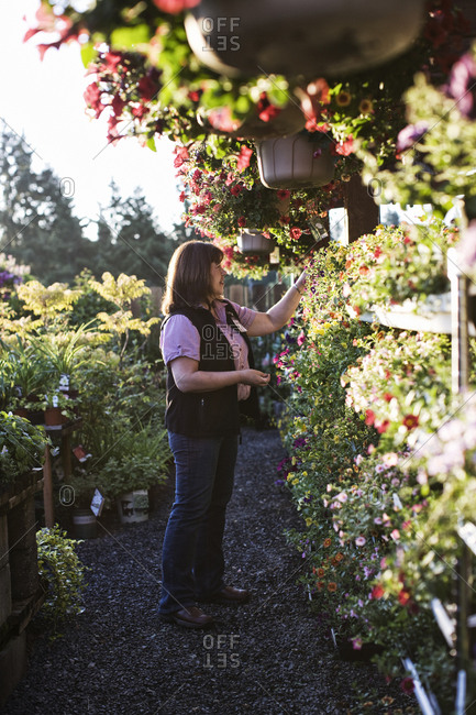 Caucasian woman shopping for new plants at a garden center nursery, choosing from a display of baskets and flowering plants.