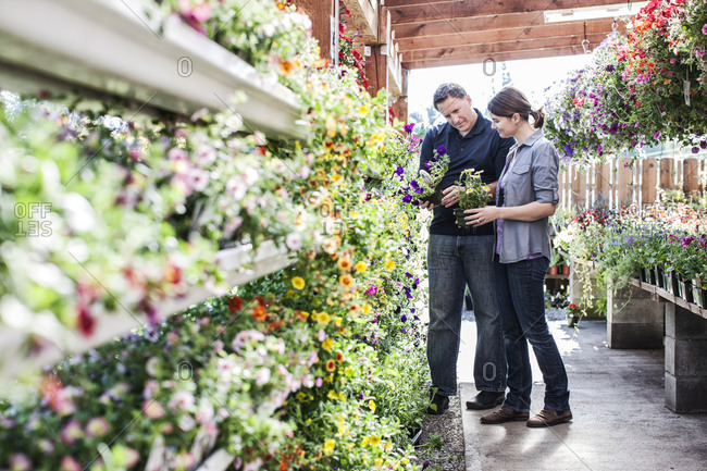 Caucasian man and woman shopping for new plants at a garden center nursery.