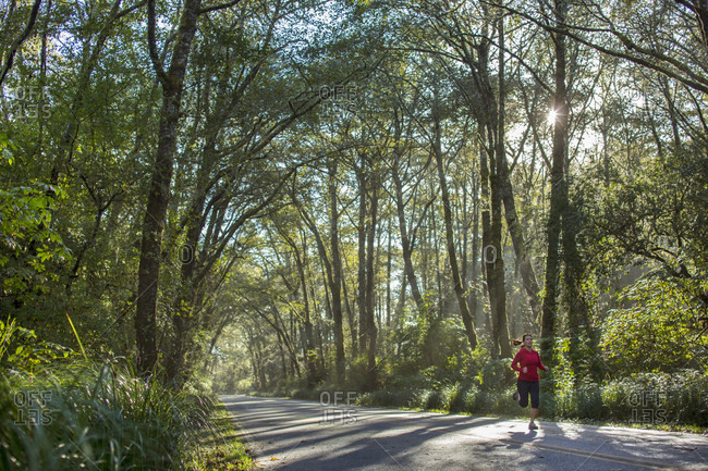 Woman running on road through forest, Cape Disappointment State Park, Aberdeen, Washington State, USA