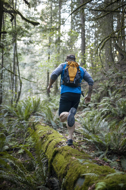 Man trail running in forest near Elbow Lake in Fraser Valley, Harrison Mills, British Columbia, Canada