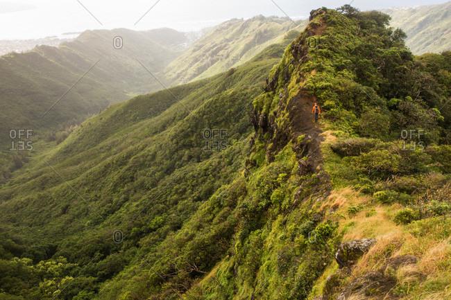 Man hiking along mountain ridge on Ko'olau Mountain Range, Honolulu, Oahu, Hawaii Islands, USA