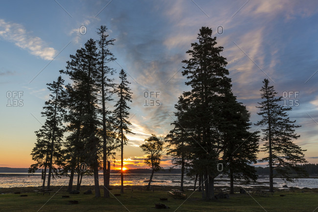 Scenery with silhouettes of trees at sunrise, Thompson Island, Acadia National Park, Maine, USA