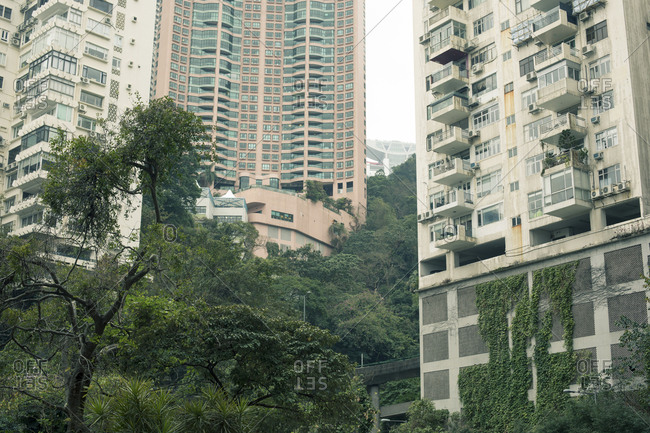 Low angle view of Hong Kong apartment buildings and trees