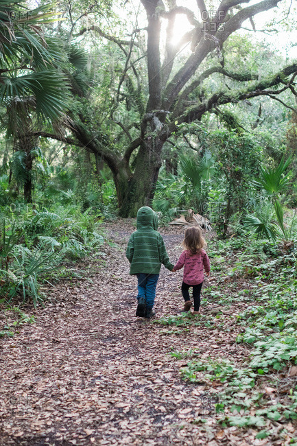 Young boy leading little sister along hiking trail in the woods