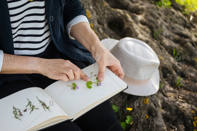 Woman pressing flowers into blank notebook