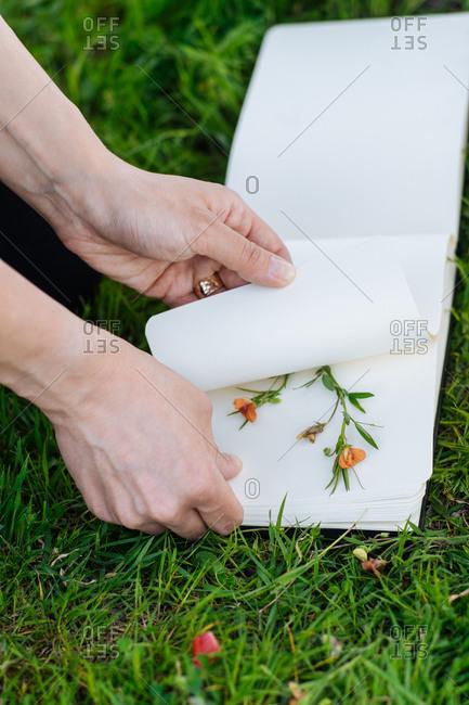Flower pressing process