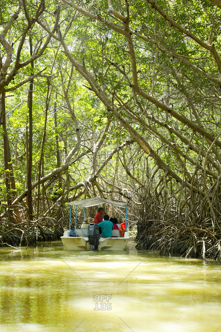 Celestun, Mexico - March 05, 2018: Tourists in a boat touring the mangrove