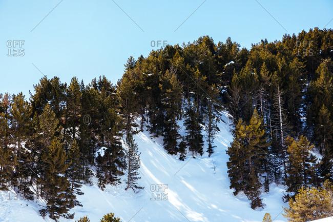 Snowy landscape of Baqueira Beret, Catalonia, Spain