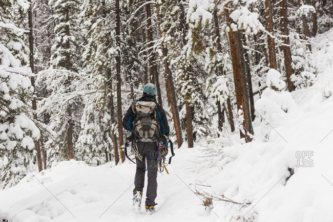 Male rock climber walking in snowy forest during winter