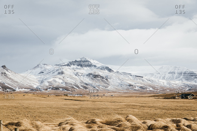 Field of golden grass at the base of a snow-covered mountain range