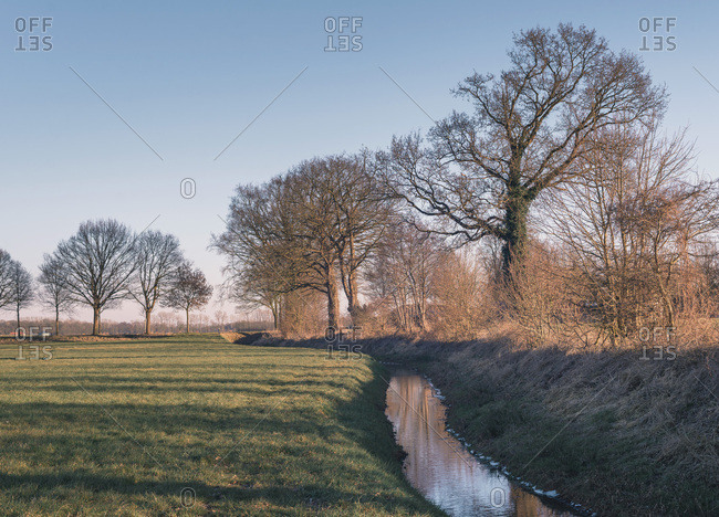 Dutch rural winter landscape with small ditch and trees under blue sky
