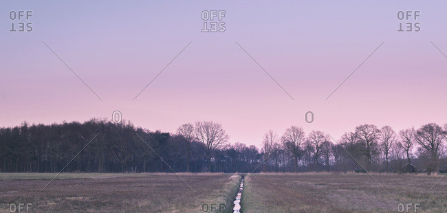 Pasture with ditch and winter trees under pink sunset sky