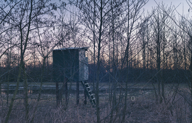 Deer hunting post behind winter trees at sunset