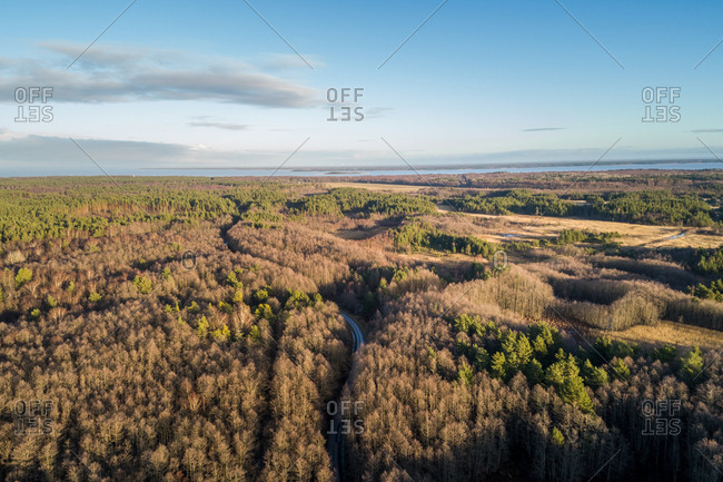 Aerial view of an empty road in the forrest of Norrby on Vormsi Island in Estonia