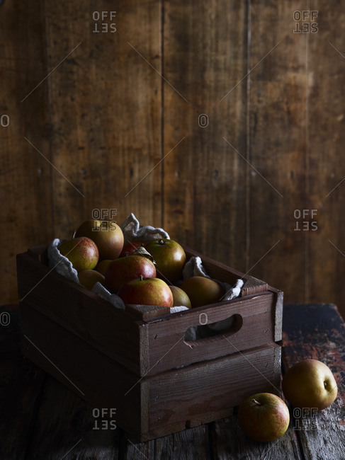 Fresh picked Cox apples in a wooden crate