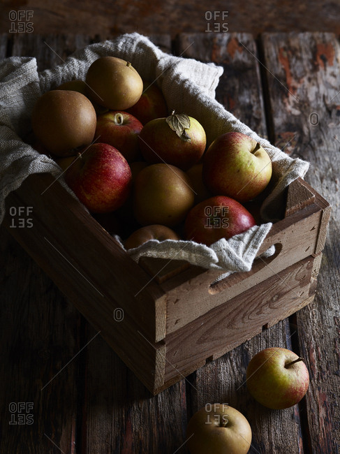 Close up of fresh picked Cox apples in a wooden crate