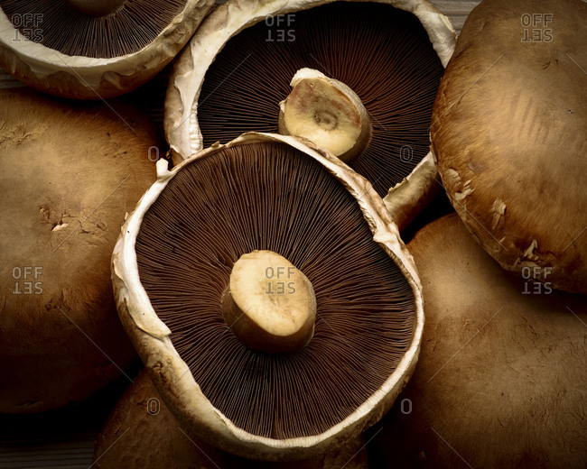 Top view of Portobello mushrooms
