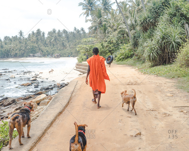 People and dogs walking on dirt footpath along tropical beach