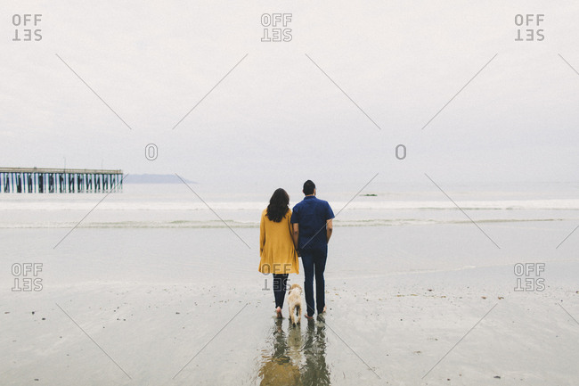 Cute couple walking with dog on wet beach