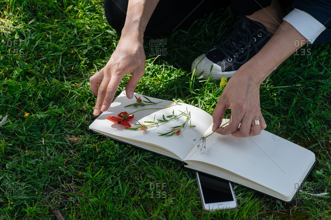 Nature enthusiast pressing flowers in blank book at the park